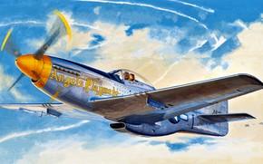 Обои Mustang, истребитель, USA, USAF, North American, P-51D, дальнего радиуса действия, 354th Fighter Group, Модификация, 353rd ...