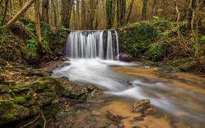 Картинка лес, камни, водопад, мох, речка