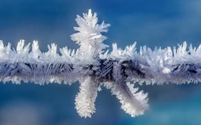Картинка холод, иней, проволока, мороз, кристаллы