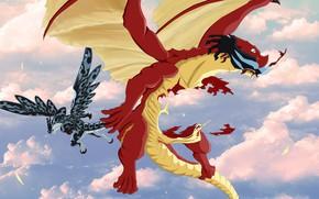 Картинка драконы, Fairy Tail, Хвост феи