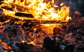 Картинка пламя, угольки, костёр, дрова