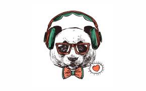 Картинка любовь, наушники, панда, бантик, хипстер