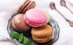 Картинка печенье, color, блюдо, ассорти, macaron, миндальное, Iryna Melnyk