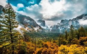 Картинка осень, лес, деревья, горы, долина, Калифорния, California, Yosemite Valley, Национальный парк Йосемити, Yosemite National Park, …