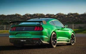 Картинка Mustang, Ford, Shelby, GT500, вид сзади, 2020, Green Hornet, EXP 500