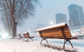 Картинка city, winter, snow, tree, buildings, cold, urban, mist, Bench, skycrapers