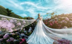 Картинка лето, небо, девушка, облака, свет, цветы, природа, поза, синева, фон, белое, голубое, сад, склон, платье, …