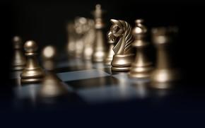 Картинка свет, стиль, фон, конь, игра, шахматы, пешка, фигуры, картинка, шахматная доска, боке