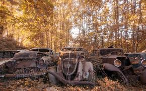Картинка машины, лом, натурализм