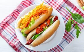 Картинка овощи, помидоры, морковь, соус, сосиска, булочка, хот дог