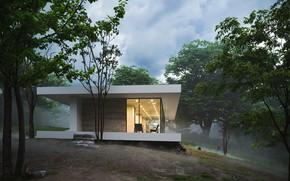 Картинка лес, небо, склон, строение, FOREST HOUSE