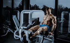 Картинка power, workout, gym, bodybuilder