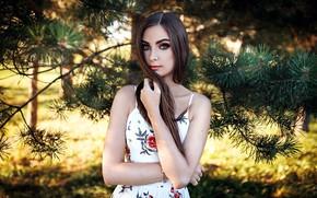 Картинка girl, Model, long hair, dress, brown hair, photo, blue eyes, lips, face, brunette, portrait, smoky …