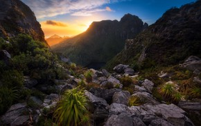 Картинка природа, утро, australia, Lake Tahune