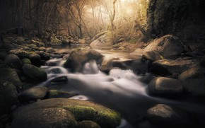 Картинка лес, камни, речка, Испания, Саламанка