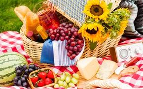 Картинка трава, подсолнухи, ягоды, вино, корзина, поляна, арбуз, сыр, клубника, хлеб, виноград, нож, бутылки, доска, фрукты, …