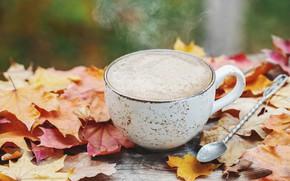 Картинка осень, листья, wood, autumn, leaves, coffee cup, чашка кофе