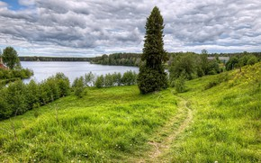 Картинка лес, лето, облака, деревья, река, тропа