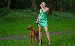 Картинка девушка, природа, поза, волосы, собака, платье, ножки, красивая