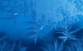 Картинка холод, зима, иней, стекло, снег, снежинки, узор, лёд, структура, текстура, мороз, Новый год, кристаллы, синий …