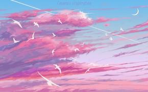 Картинка небо, облака, птицы