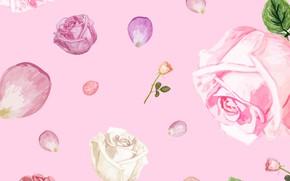 Картинка фон, розовый, розы, текстура, лепестки, бутоны