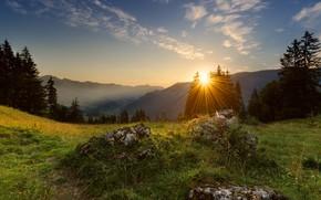 Картинка лучи, деревья, горы, природа, рассвет