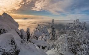 Картинка зима, облака, снег, деревья, пейзаж, горы, природа, национальный парк, хребет, Урал, Таганай, Шарапов Андрей
