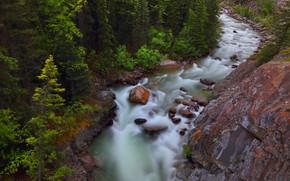 Картинка лес, деревья, скала, река, камни, Канада, Альберта, Alberta, Canada, Jasper National Park, Национальный парк Джаспер, …