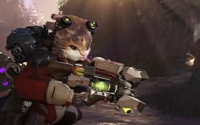 Картинка кот, оружие, существо, Crucible
