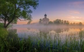 Картинка лето, небо, трава, деревья, пейзаж, природа, туман, озеро, пруд, дерево, рассвет, берег, утро, церковь, храм, …