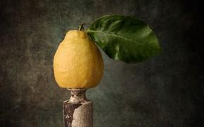 Картинка лимон, еда, фрукт