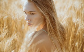 Картинка girl, long hair, field, photo, photographer, blue eyes, model, lips, face, blonde, wheat, looking back, ...