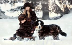 Картинка зима, снег, природа, дети, животное, собака, мальчик, девочка, щенок, бернский зенненхунд