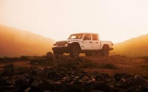Картинка белый, туман, камни, внедорожник, дымка, пикап, Gladiator, 4x4, Jeep, Rubicon, влажность, 2019