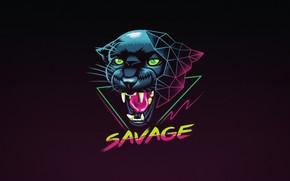 Картинка Минимализм, Кошка, Пантера, Фон, Арт, Neon, Panther, Savage, Synth, Retrowave, Synthwave, New Retro Wave, Futuresynth, …