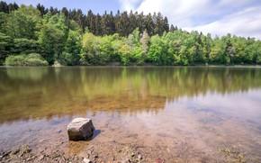Картинка небо, вода, деревья, природа, озеро