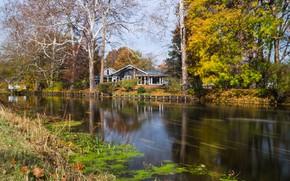 Картинка пейзаж, природа, дом, парк, красота