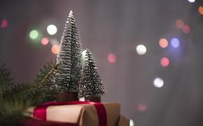 Картинка праздник, подарок, елки, новый год, декор