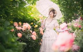 Картинка зелень, белый, лето, взгляд, листья, девушка, цветы, ветки, поза, зонтик, настроение, листва, розы, весна, шляпа, …