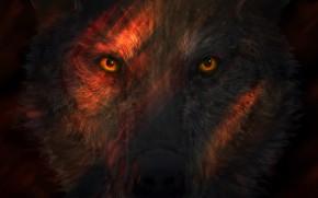 Картинка Взгляд, Глаза, Волк, Морда, Арт, Art, Wolf, Eyes, Животное, Animal, Josef Bartoň, by Josef Bartoň, …