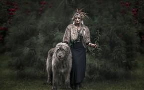 Картинка природа, человек, собака