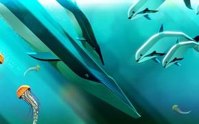 Картинка Океан, Рыбы, Море, Рыба, Медуза, Стиль, Дельфин, Кит, Медузы, Fish, Киты, Животные, Арт, Art, Dolphin, …