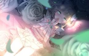 Картинка взгляд, розы, девочка