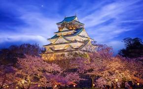 Картинка замок, красота, Япония, освещение, Himeji Castle in Osaka