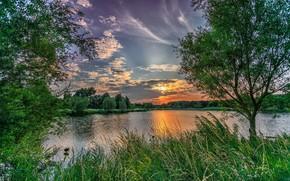 Картинка пейзаж, природа, озеро, рассвет, красота, растения, утро