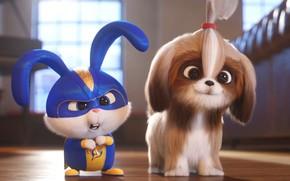 Картинка кролик, щенок, Тайная жизнь домашних животных 2, The Secret Life of Pets 2