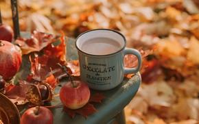 Картинка осень, листья, яблоко, кружка, чашка, напиток, каштан, какао