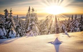 Картинка зима, солнце, лучи, снег, деревья, пейзаж, горы, природа, ели, леса