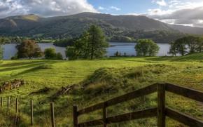 Картинка лето, деревья, озеро, холмы, Великобритания